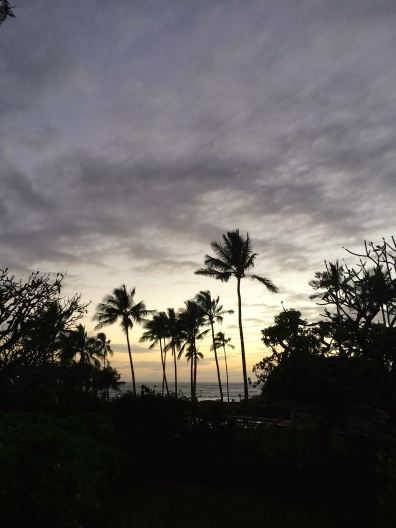 Hawaii - February 2015